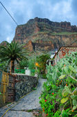Street of Masca village with old houses, Tenerife, Canarian Isla — Stock Photo