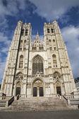 Brussel - sint-michaël en sint-goedele gotische kathedraal - west gevel — Stockfoto