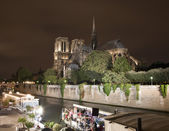 Paris - Notre Dame cathedral in night — Stock Photo