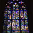 Window-pane from st. vitus cathedral in prague — Stock Photo