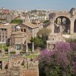 Stock Photo: Rome - outlook from Palatne hill to Forum Romanum