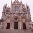 Siena - Santa Maria Assunta cathedral — Stock Photo