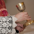 Stock Photo: Hands of priest by mass and cap
