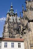 Praga - cattedrale di san vito — Foto Stock