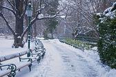 Vienna - Stadtpark in winter morning — Stok fotoğraf