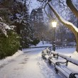 Stock Photo: Vienn- Stadtpark in winter morning