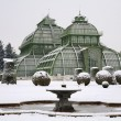Vienna - glasshouse by palace Schonbrunn in winter — Stock Photo