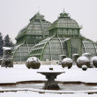 Vienna - glasshouse by palace Schonbrunn in winter - Stock Photo