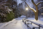 Vienna - Stadtpark in winter morning — Stock Photo
