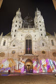Vienna - st. Stephen cathedral in winter night from west - Heidenturme — Stock Photo