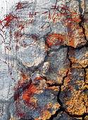 Draw of Jesus face and dry earth — Foto Stock