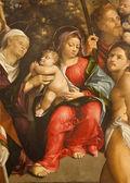 Verona - 27 gennaio: dettaglio della Madonna con bambino da vernice di f. torbido da anno 1520 nella basilica di san zeno, il 27 gennaio 2013 a verona, Italia. — Foto Stock