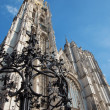 Antwerp -  West facade of cathedral of Our Lady and grate of water well — Stock Photo