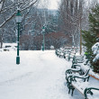 Vienna - Stadtpark in winter morning — Stock Photo