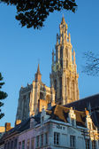 Antwerp - Towers of cathedral of Our Lady in morning light — Stock Photo