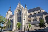 Mechelen - our lady gotik kilise de dyle güney arasında — Stok fotoğraf