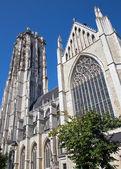 Mechelen - St. Rumbold's cathedral from south September 4, 2013 in Mechelen, Belgium. — Stockfoto
