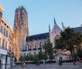 MECHELEN, BELGIUM - SEPTEMBER 4: St. Rumbold's cathedral in dusk on September 4, 2013 in Mechelen, Belgium. — Stockfoto