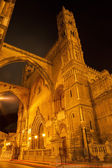 Palermo - west towers and portal of Cathedral or Duomo at night — Stock fotografie