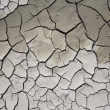 Stock Photo: Dry mud