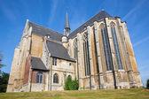 LEUVEN, BELGIUM - SEPTEMBER 3: St. Quentius gothic church from south in Sepetember 3, 2013 in Leuven, Belgium. — Stockfoto