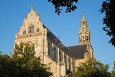 Antwerp - St. Pauls church (Paulskerk) in evening light — Stockfoto