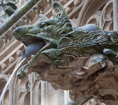 TOLEDO - MARCH 8: Detail of animal as gothic spoutler in rain from atrium of Monasterio de San Juan de los Reyes on March 8, 2013 in Toledo, Spain. — Stock Photo