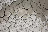 Barro seco — Foto de Stock