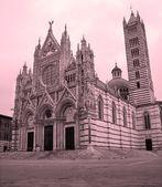 Sienne - cathédrale santa maria assunta de matin — Photo