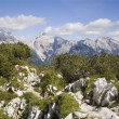 Julialps - Slovenia — Stock Photo #39750379