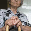 Stock Photo: Grandmother with staff