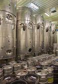 Indoor of wine manfactutre of great Slovak producer. Modern big cask for the fermentation. — Foto de Stock