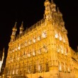 Leuven - Gothic town hall at night — Stock Photo #40563955