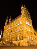 Leuven - Gothic town hall at night — Zdjęcie stockowe