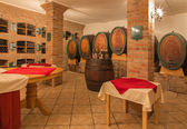 BRATISLAVA, SLOVAKIA - JANUARY 30, 2014: Interior of wine cellar of great Slovak producer. — Stock Photo