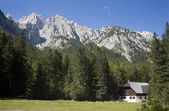 Julian alps landscape and bower - look from valley of Aliazevov dom - Skrlatica peak — Stock Photo