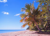 Midday from beach of Puerto Rico — Stock Photo
