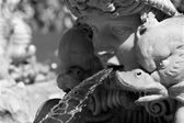 Rome - detail from foutain on the Piazza Navona — Stock Photo