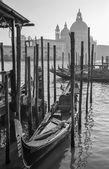 Venice - Santa Maria della Salute church and gondolas — Stock Photo