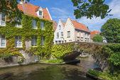 Bruges - kanal için bir görünüm ve eski küçük köprü üzerinden steen wersdijk sokak sarmaşık. — Stok fotoğraf