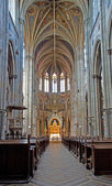 VIENNA, AUSTRIA - SEPTEMBER 8, 2009: Nave of new - gothic Votivkirche church. — Stockfoto
