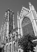 Mechelen - St. Rumbold's cathedral from south September 4, 2013 in Mechelen, Belgium. — Stock Photo