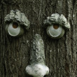 Royalty-Free Stock Photo: Tree Face