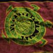Royalty-Free Stock Photo: Turtle Cloth