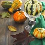 Autumn pumpkins and autumn leaves — Stock Photo