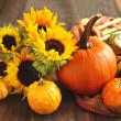 Autumn pumpkins and sunflowers — Stock Photo