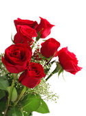 Red roses bouquet on white background — Stock Photo