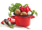 Vegetables in a cooking pot over white — Stock Photo