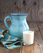 Jarra y vaso de leche — Foto de Stock