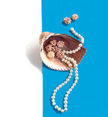 Sea shell with a pearl beads — 图库照片